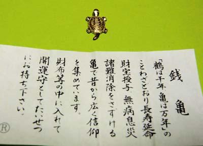 01014亀.jpg