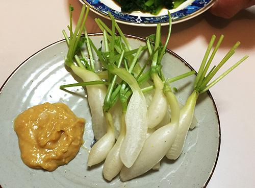 02 大根味噌マヨネーズ