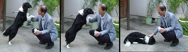 12ムー教授と犬
