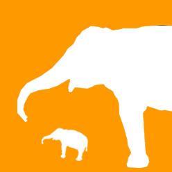 象さんの耳打ち
