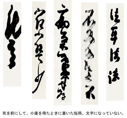 第5回 晩年の天来 / 田中鹿川
