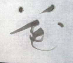 12 淡墨花s.jpg