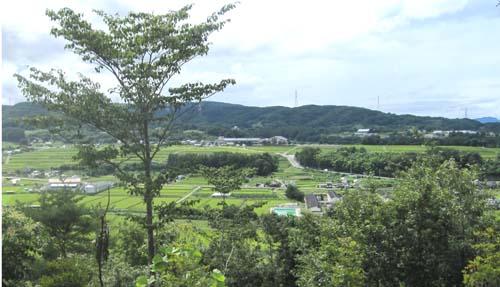 05 公園からの眺め.jpg