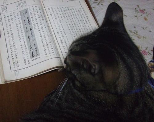 ひた枕草子2.jpg